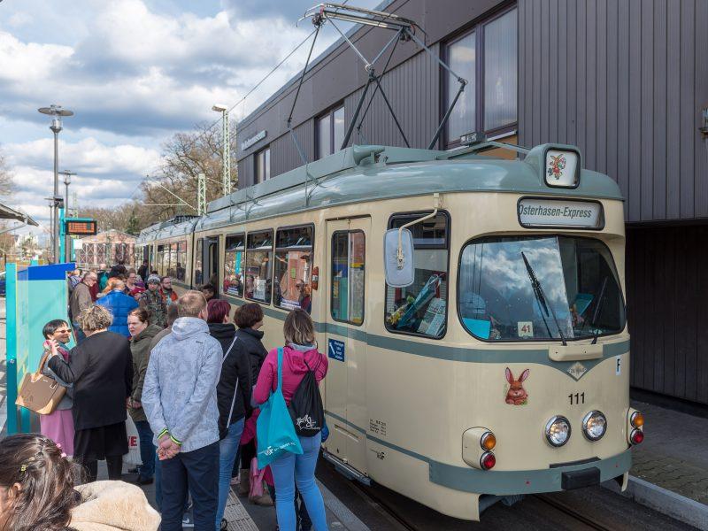 Osterhasen-Express